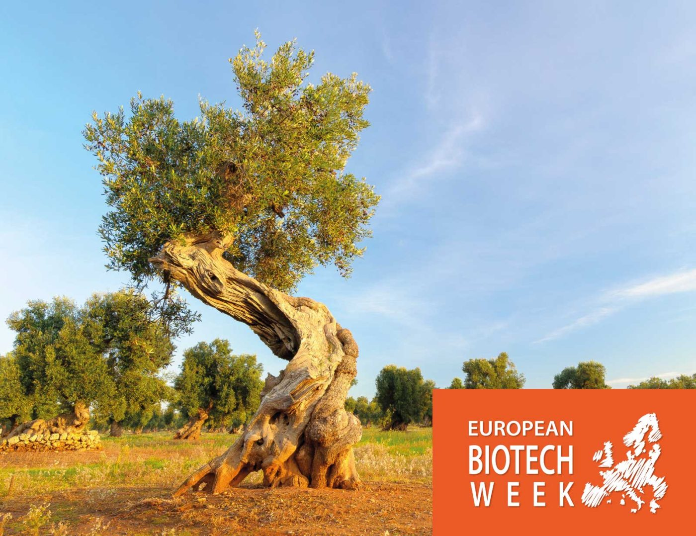 European Biotech Week 2018