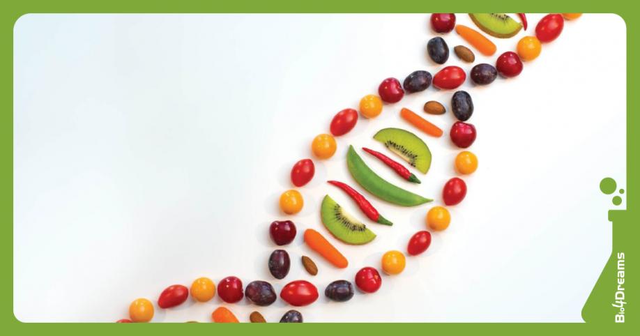 Startup | NGB Genetics