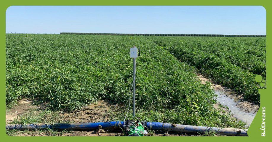 Sprechi acqua   Irrigazione sostenibile   Startup Bluetentacles